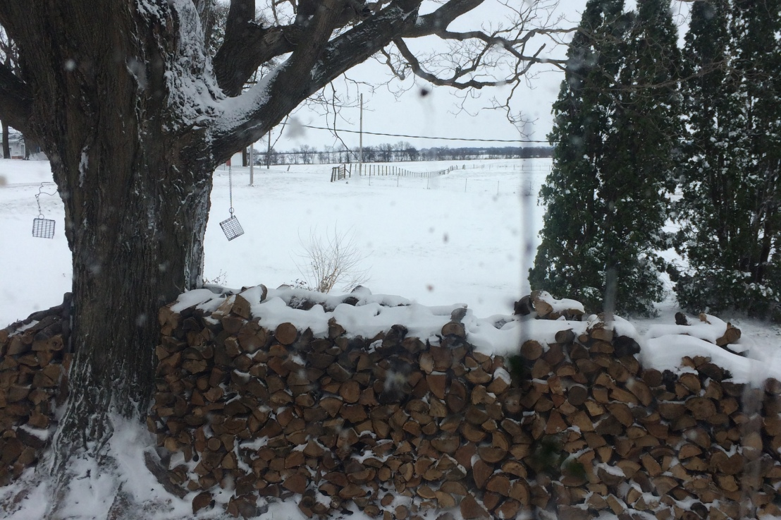Winter Days On TheHomeStead